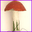Antique Cotton Christmas ornament MUSHROOM