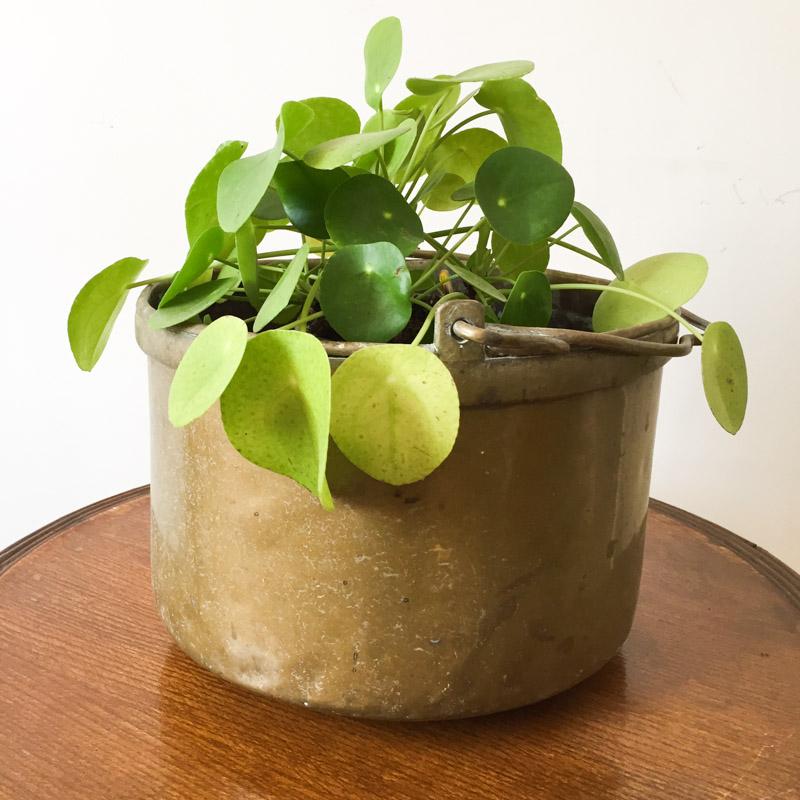 Старинный латунный горшок для цветов